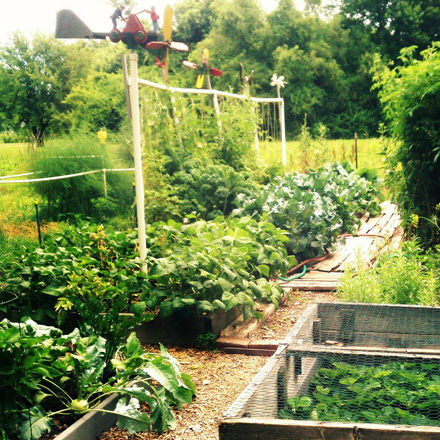 Spring Into Sustainable Gardening! | Creative Conservation
